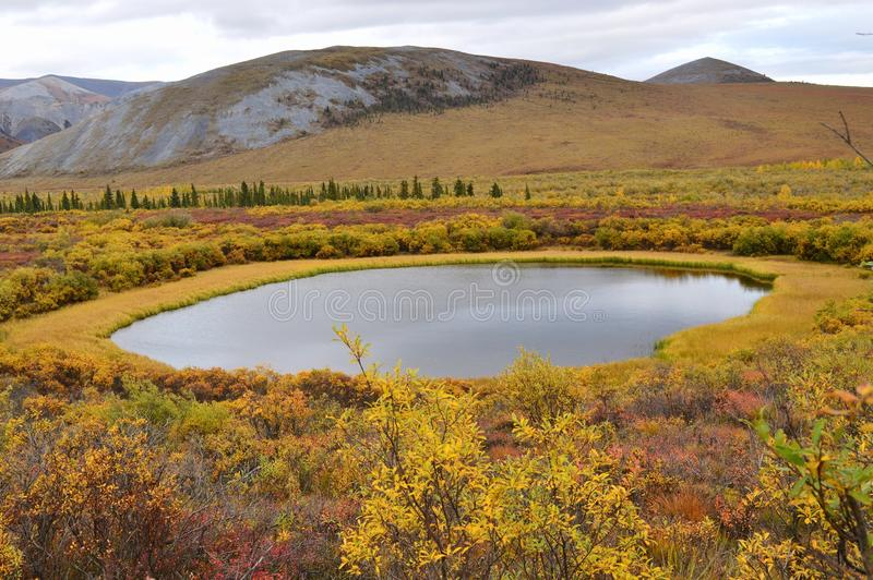 Yukon, Canada: Tundra Thaw Pond. A tundra thaw pond (with up to 100 metres of core ice under it) is created by foliage disruption, which exposes the ground to stock image
