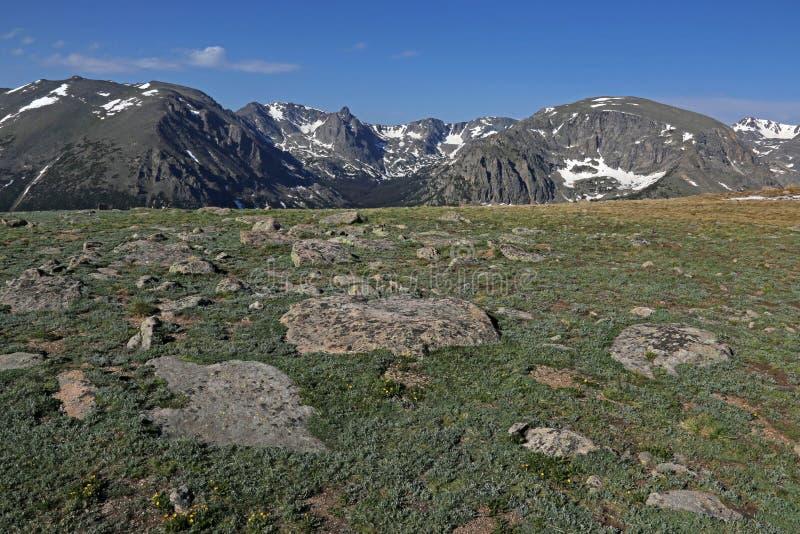 Tundra und Granit lizenzfreie stockfotografie