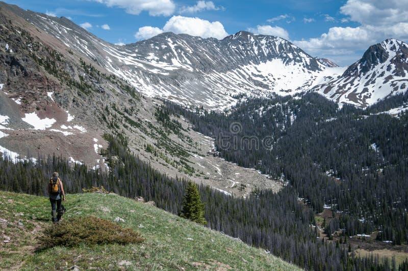 Tundra-Wandern stockfoto