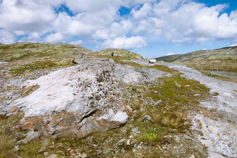 Tundralandschaft in Norwegen lizenzfreies stockfoto