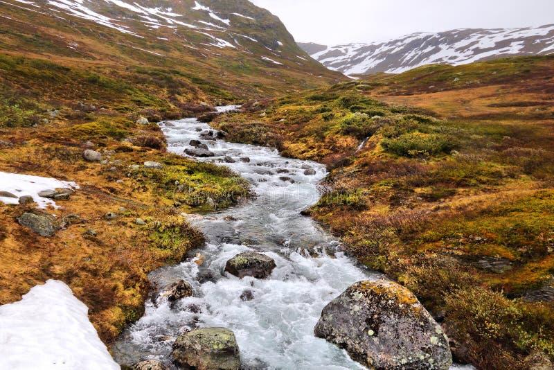 Tundrowy biome w Norwegia zdjęcie stock