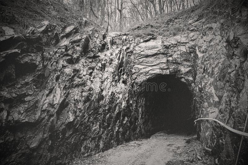 Tunel Blue Ridge obrazy stock