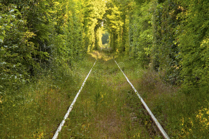 Tunel miłość obraz royalty free
