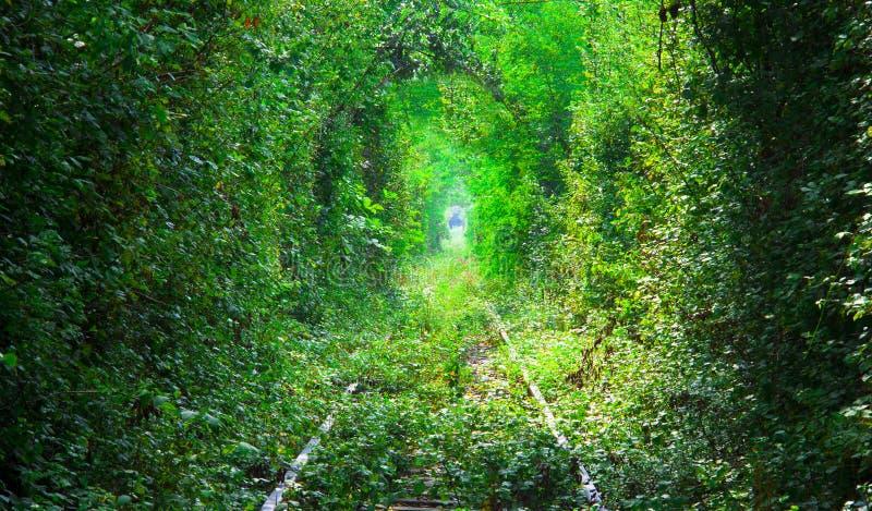 Tunel miłość w Rumunia obrazy stock