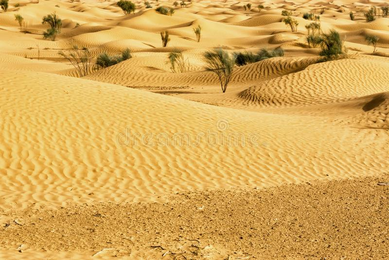 Tunesier Sahara Desert Dune Background lizenzfreies stockfoto