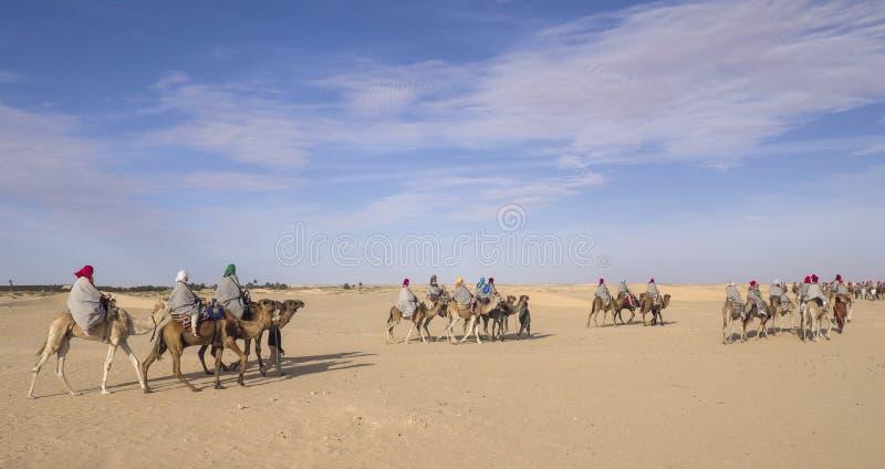 Tunezja, Sahara - 05/22/2019 - wielbłądy jeździ pustynią obraz royalty free