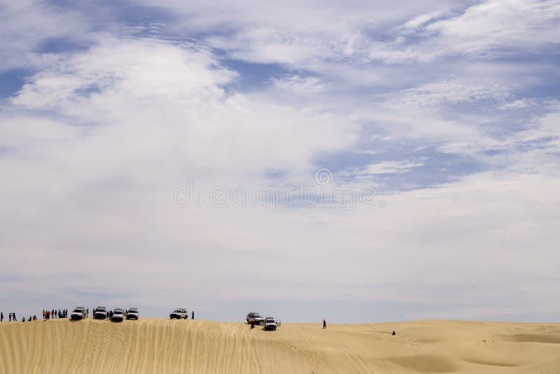 Tunezja, Sahara - 05/22/2019 - wielbłądy jeździ pustynią zdjęcie royalty free