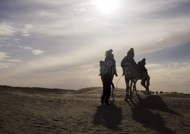 Tunezja, Sahara - 05/22/2019 - wielbłądy jeździ pustynią obrazy stock