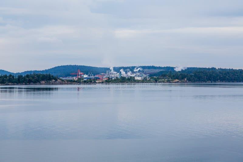 Tung bransch på kust av Kanada arkivfoton