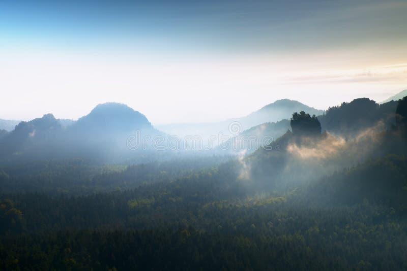 Tung dimmig gryning Dimmig gryning i härliga kullar Maxima av kullar klibbar ut från dimmig bakgrund royaltyfri foto