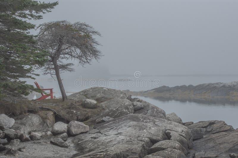 Tung morgondimma på Rocky Coast av Maine fotografering för bildbyråer