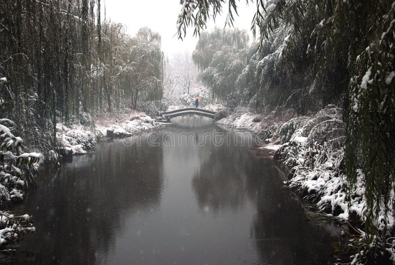 tung snow för bro royaltyfria bilder