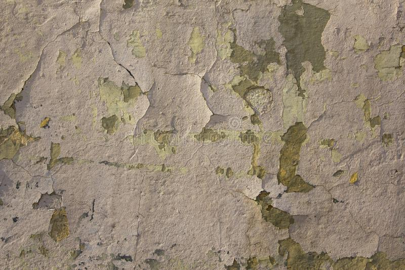Tungt skadad gammal vit gr? beige betongv?gg med skalning av m?larf?rg och av sprickor Textur f?r grov yttersida arkivbild