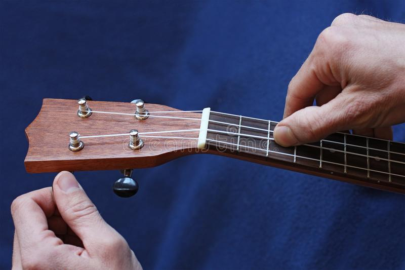 Tuning the ukulele strings, closeup stock images