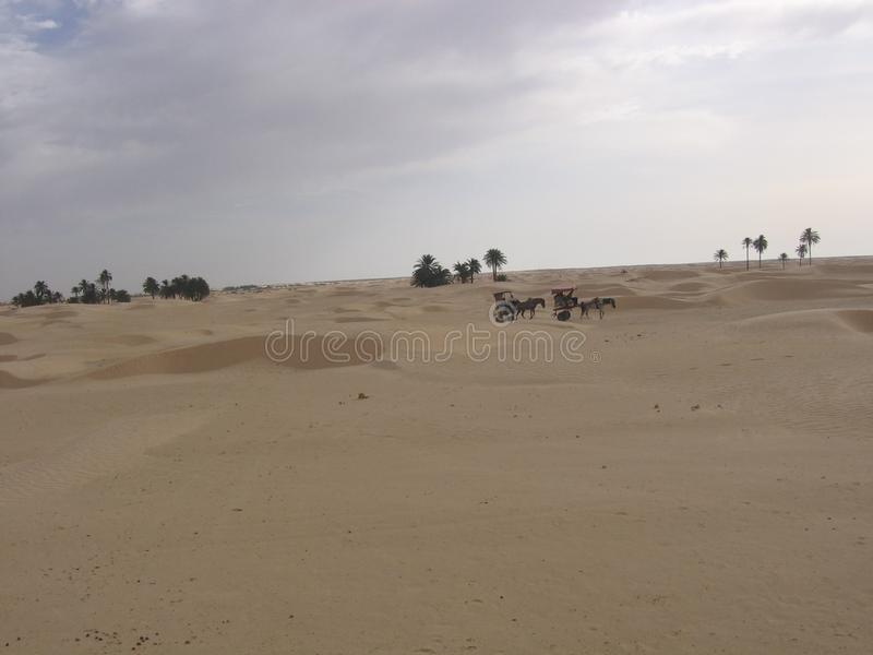 Sahara - Tunisia. Tunisia is a country in the Maghreb region of North Africa, covering 165,000 square kilometres. Its northernmost point, Cape Angela, is the royalty free stock image