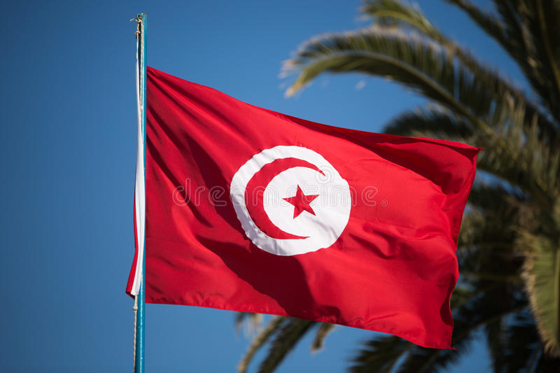 Tunisian flag. A tunisian flag floating in the wind, on a blue sky with a palm tree in the background royalty free stock photo