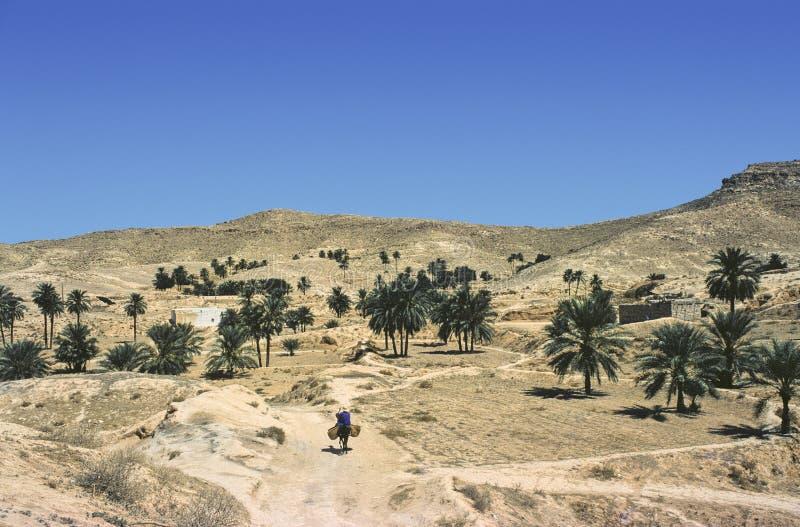 tunisian matmatas arkivfoton
