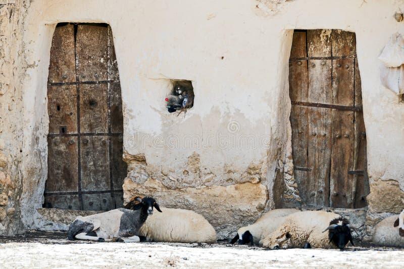 Tunisie Het dorp van Chenini royalty-vrije stock fotografie