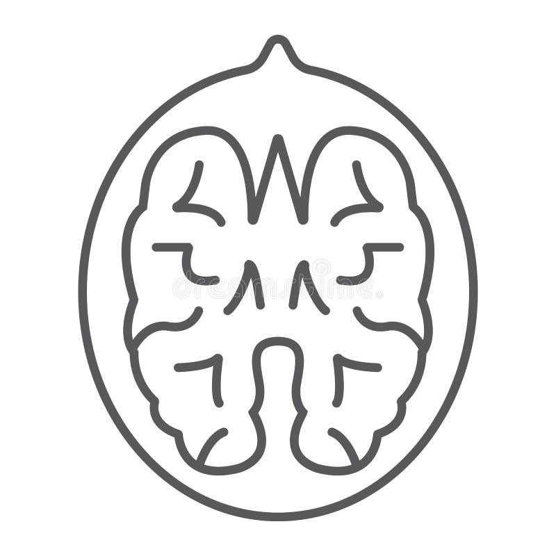 Tunn linje för valnöt symbol, grönsak och mutter stock illustrationer