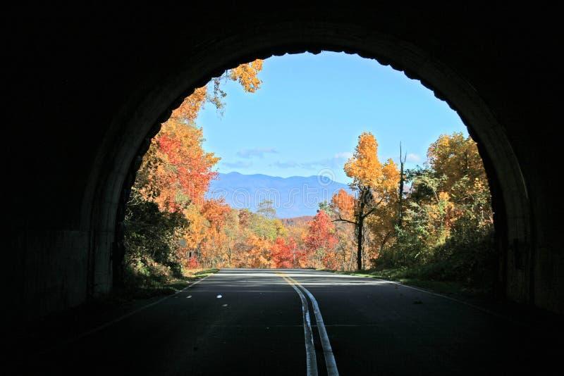 Tunnel-Anblick im Herbst lizenzfreies stockfoto