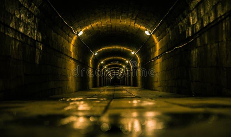 Tunnel bagnato e triste con le luci fotografia stock libera da diritti