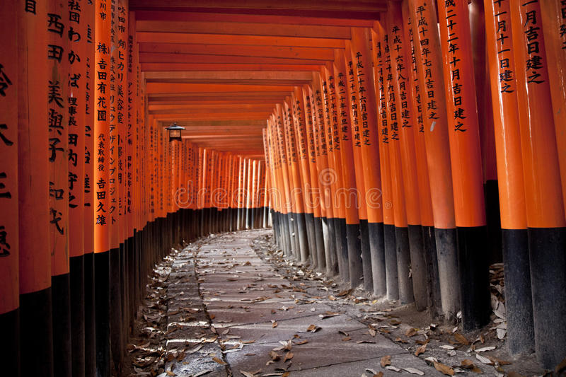 Tunnel De 10000 Portes De Torii Photo stock