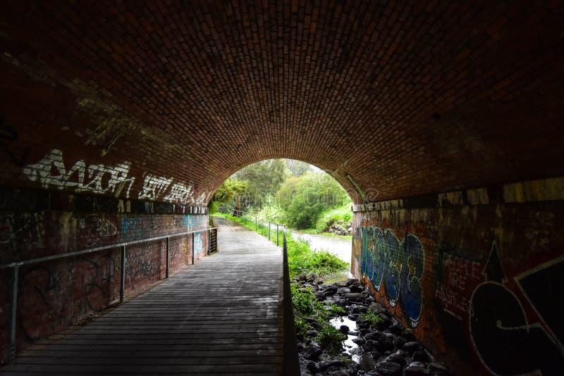 Tunnel de graffitis photographie stock
