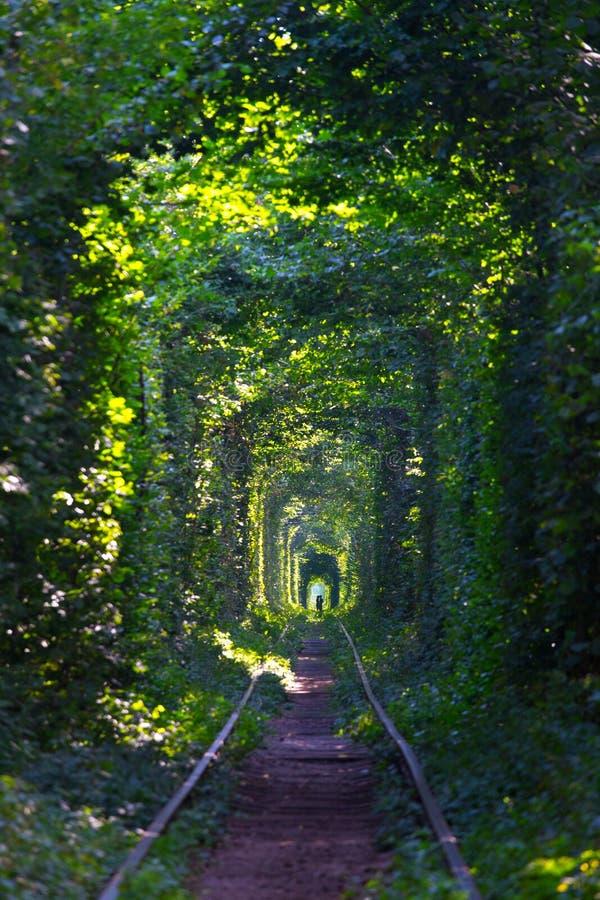 Tunnel de l'amour photos libres de droits