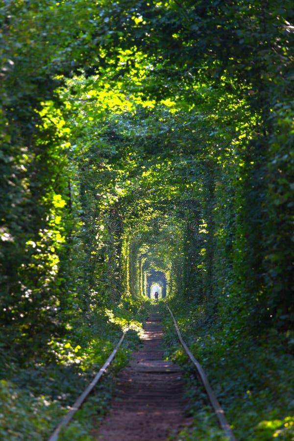 Tunnel de l'amour photo libre de droits