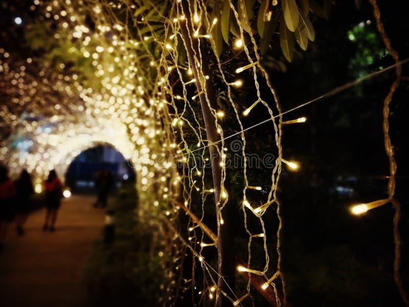 Tunnel de lumières de Noël d'arc à l'intérieur photos libres de droits
