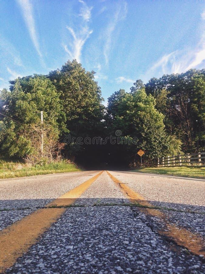 Tunnel dell'albero fotografie stock