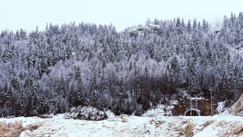 Tunnel e strada ventosa curvy attraverso il legno innevato nel parco nazionale delle montagne del Montenegro immagine stock libera da diritti