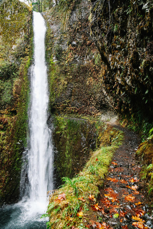 Tunnel Falls, Oregon royalty free stock images