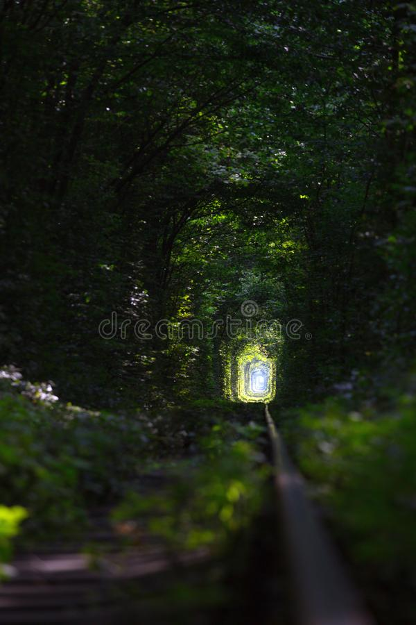 Tunnel of Love at  Ukraine royalty free stock photography