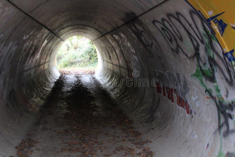 Tunnel med grafitti royaltyfria foton