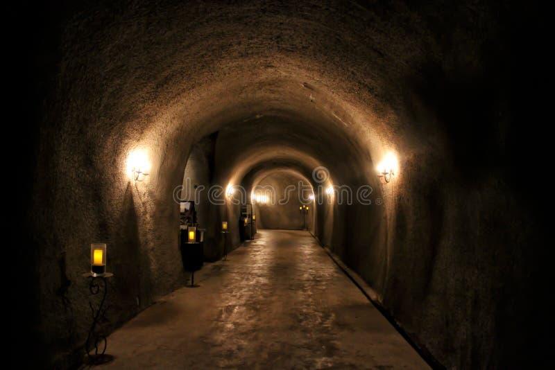Tunnel scuro con le luci in una cantina della cantina fotografie stock libere da diritti