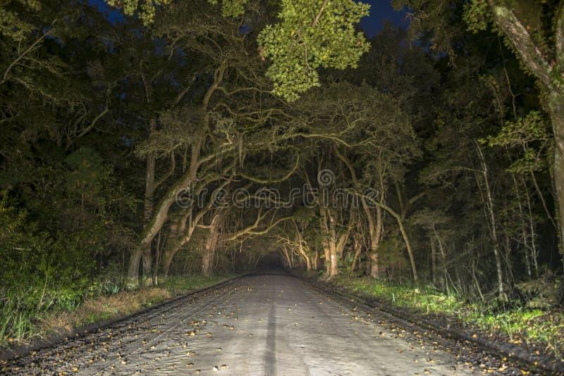 Tunnel spettrale terrificante della quercia nell'isola di Edisto, Carolina del Sud fotografia stock