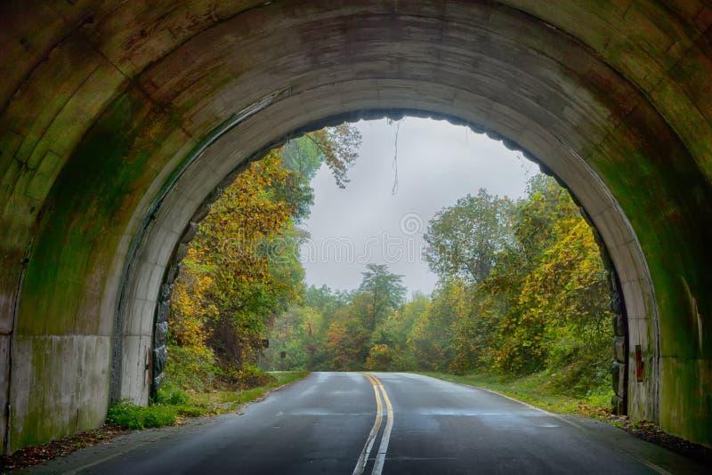 Tunnel su Ridge Parkway blu in Nord Carolina fotografia stock libera da diritti