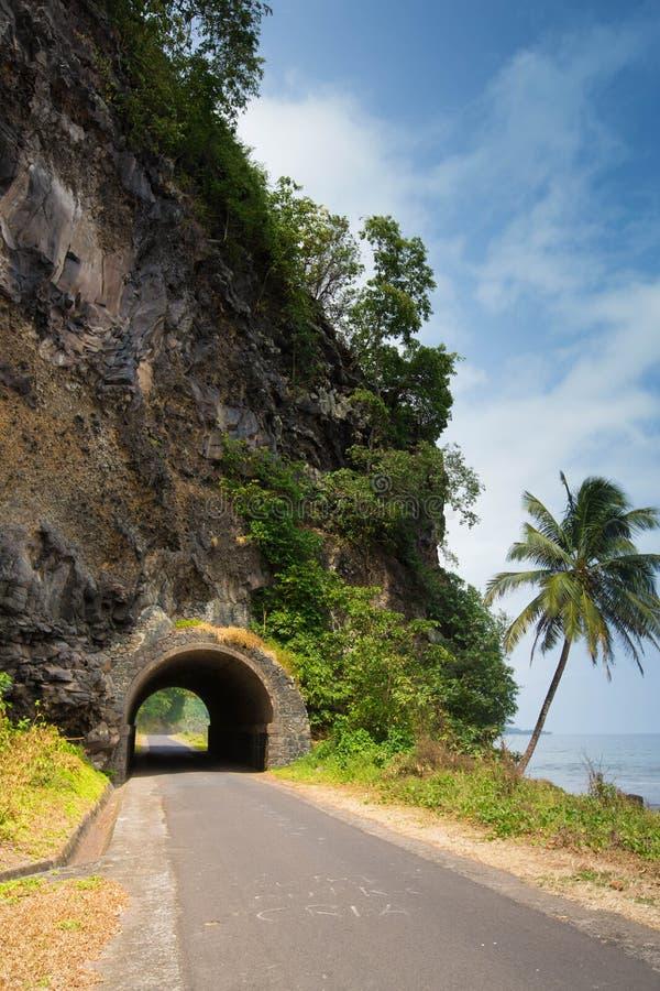 Tunnel sur une route tropicale photos stock