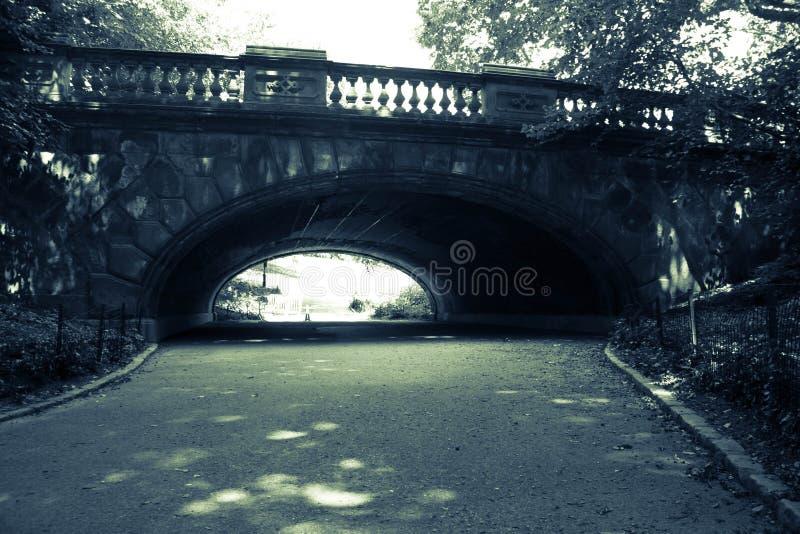 Tunnel under bron i mörker - grön tappningstil, Central Park fotografering för bildbyråer