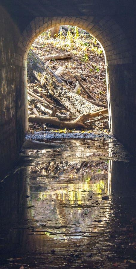 Tunnel zur Natur lizenzfreie stockbilder