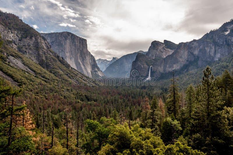 Tunnelmening bij het Nationale Park van Yosemite stock foto's