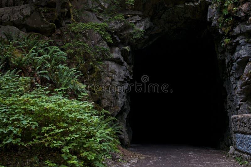 Tunnels d'Othello, espoir, Colombie-Britannique photographie stock