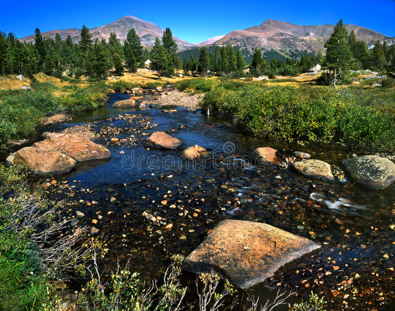 Tuolumne Meadows stock photography