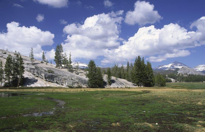 Tuolumne Meadows in Yosemite royalty free stock photography