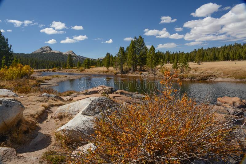 Tuolumne Meadows in Yosemite National Park. A view of Tuolumne Meadows in Yosemite National Park near the stream royalty free stock photo