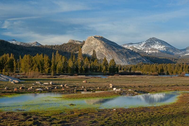 Tuolumne Meadows, Yosemite Nationalpark lizenzfreie stockfotografie