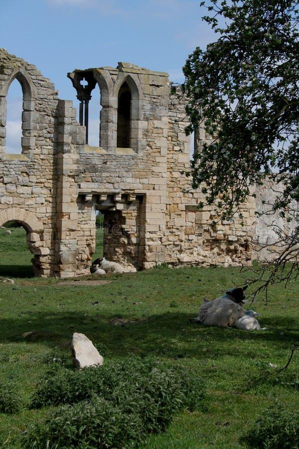 Tupolme修道院废墟,在Woodhall温泉林肯郡附近, 免版税库存图片