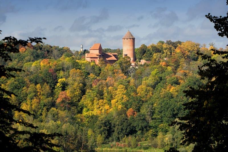 turaida замока стоковые фото