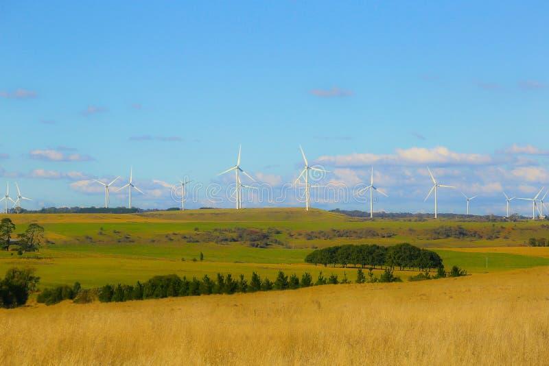 Turbina da exploração agrícola de vento no fundo do céu azul Campo amarelo do outono imagem de stock